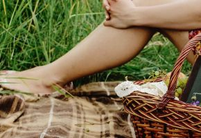 Summer time is picnic time